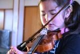 バイオリン (13)