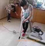 掃除 (1)