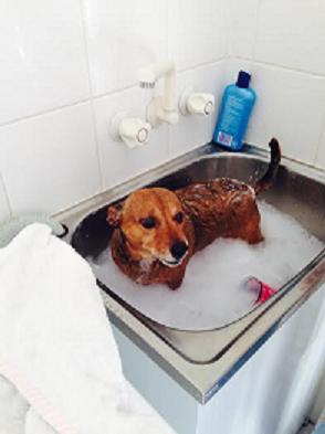 Skip Bath 2