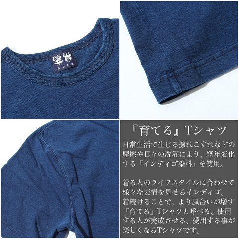 raysai1.jpg