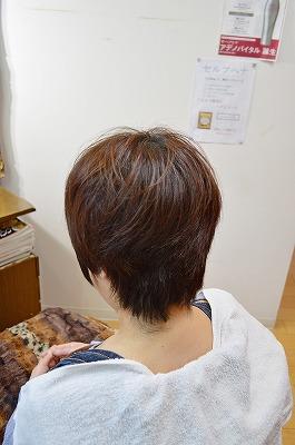 s9DSC_0111.jpg