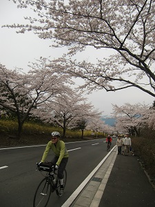冨士桜自然墓地公園3
