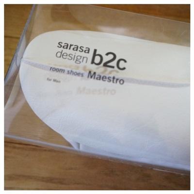 sarasa8.jpg
