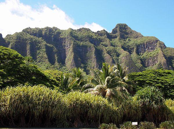 6,23ハワイにて-10jpg