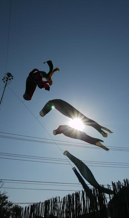 空を飛ぶ・・・
