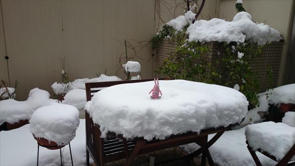 雪テーブル