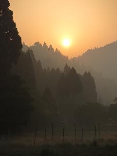 20140531生杉 002