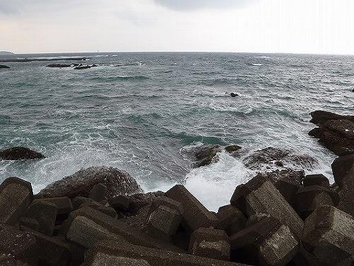 今日の田辺湾