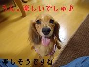 DSC06706.jpg