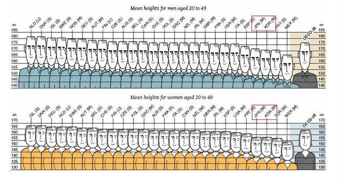 人 男性 身長 韓国 平均