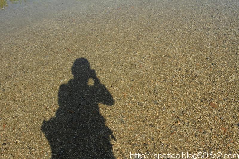 水底・砂礫質