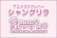 札幌 アニメコスプレバー シャングリラ Shangri-La