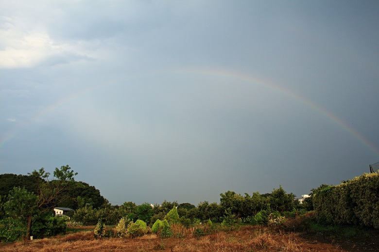 20140727虹a