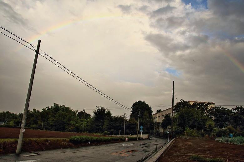 20140816虹1Hb