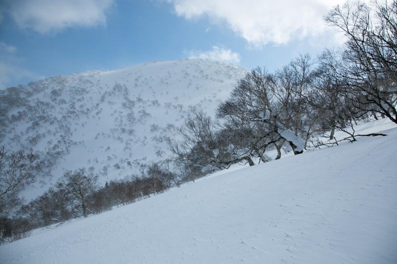 horohoro20140323-6042.jpg