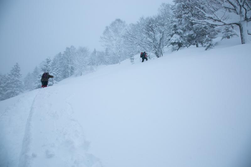 shiraoidake20140308-5824.jpg