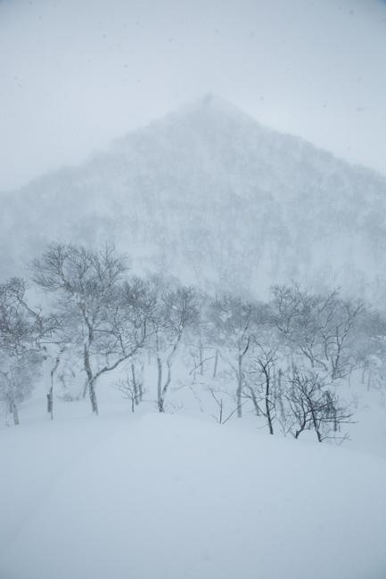 shiraoidake20140308-5848.jpg