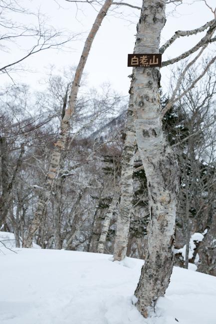 shiraoiyama20140215-5423.jpg