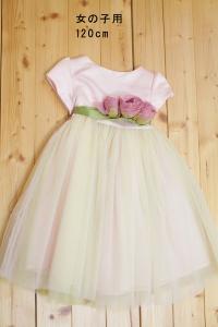 ドレス0011