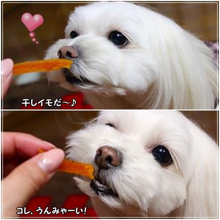 安納芋、すももん 大喜びで食べますよ~