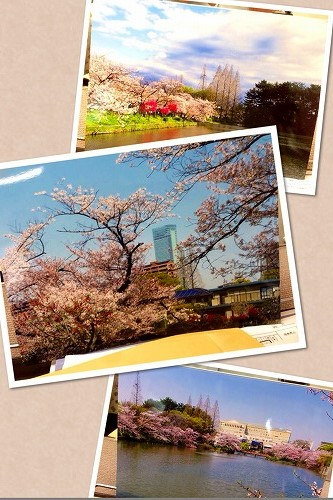 s-2014-04-25 10.17.16