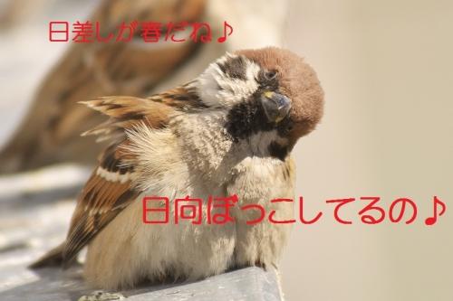010_20140228133241210.jpg