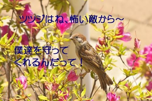 010_201405232134080d3.jpg