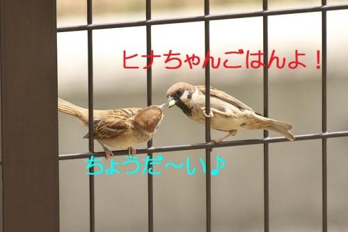 010_20140527194121168.jpg