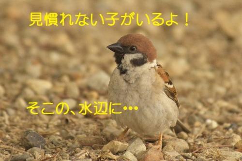 010_201407081914258e0.jpg