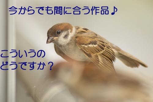 030_201408272206243f6.jpg