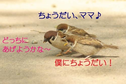 040_201405201844107ab.jpg