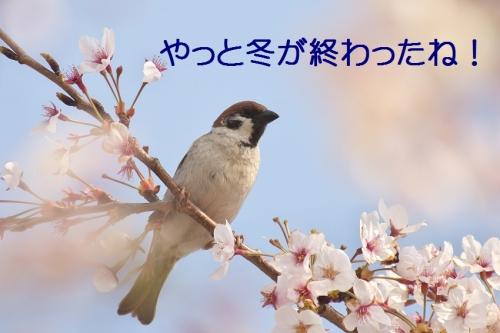 050_20140510115218f72.jpg