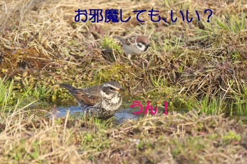 090_201403242125004ab.jpg