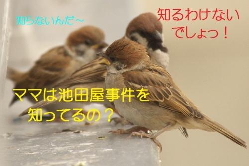 090_201405262139378a8.jpg