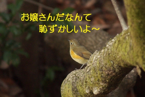 100_201403201651000e4.jpg
