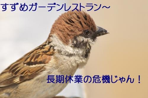 105_20140529215643dae.jpg