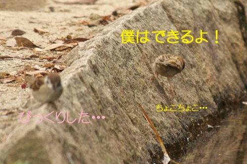 130_20140708191612337.jpg