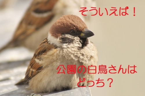 135_20140228133856146.jpg