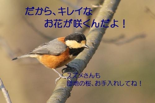 140_201403181855403fd.jpg