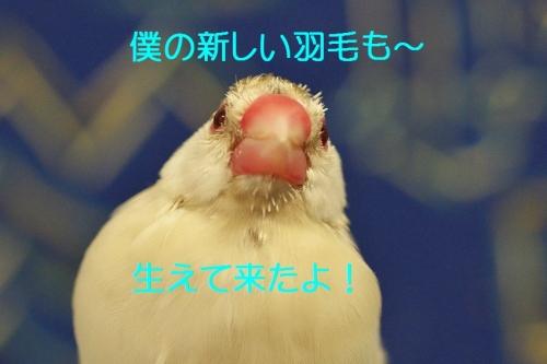 140_20140510193510198.jpg