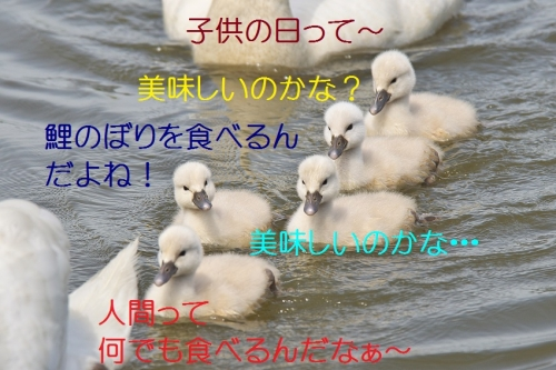 150_20140505194744979.jpg