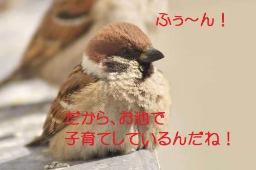 160_20140228133937db2.jpg