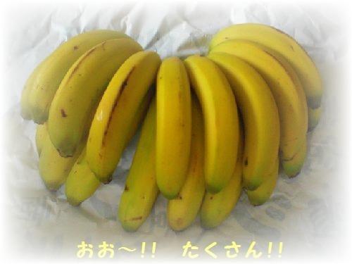 風バナナ5