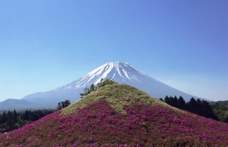 W富士山A