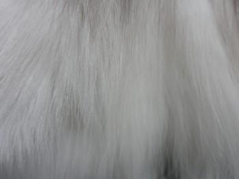 毛質 (2)