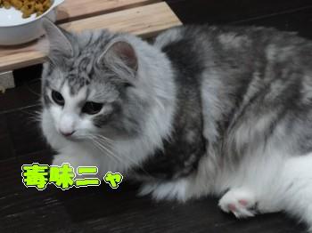 味見 (5)