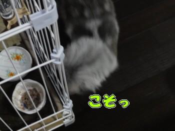 味見(2)
