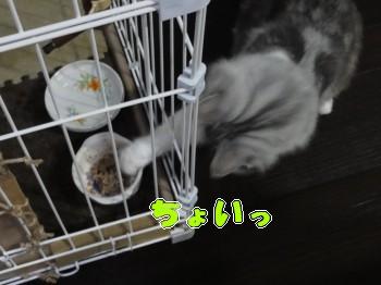 味見 (3)