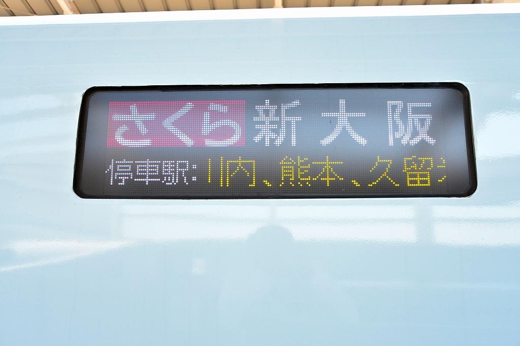 DSC_4391.jpg