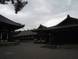 0318-toshodaiji2.jpg